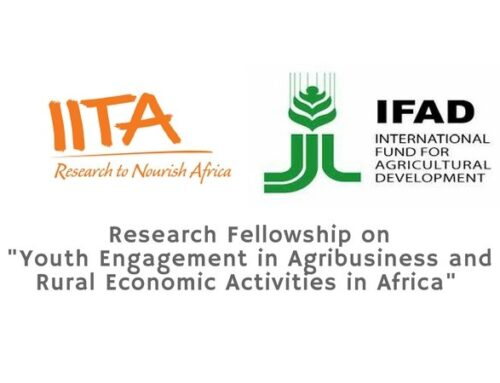 "IITA Research Fellowship 2019 To Generate Evidence On ""Youth Engagement In Agribusiness And Rural Economic Activities In Africa"""