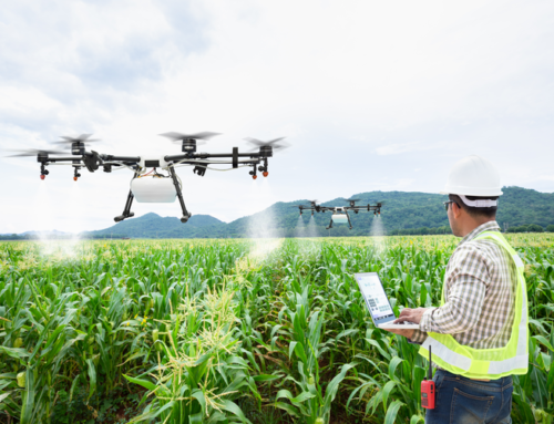 How AI is Revolutionizing Agriculture